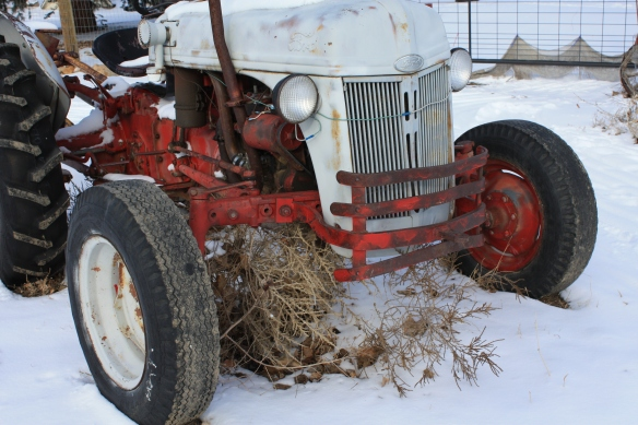 Tucked under the tractor . . . .