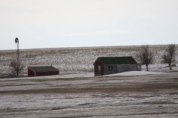 Abandoned ranch buildings bear witness to better days . . . .
