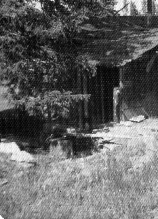 cattle drive 12 (2).jpg